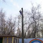 удалить деревья в детском саду
